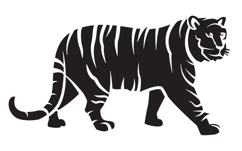 tiger pumpkin carving template