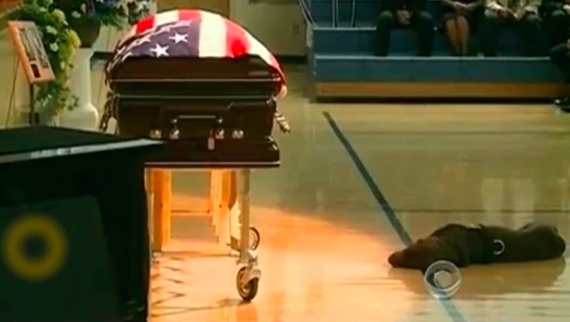 Hawkeye, the military working dog of Chief Petty Officer Jon Tumilson, lays by his master's casket. (Photo: Screenshot)