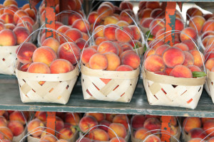 Alabama is a major producer of peaches, the state's chief commercial fruit. (Image: Alfa)