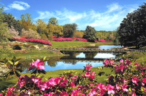 Can the home of the beautiful and serene Bellingrath Gardens really be the second most stressed city in the nation? (Visit Mobile)