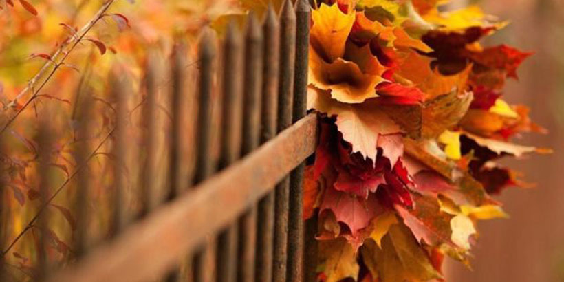 It's fall – time for football and staving off the cold to come, with seven easy energy-savers from Residential Marketing at Alabama Power.
