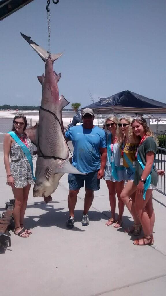 Alabama man wins grand prize for catching 354 pound bull for Deep sea fishing mobile al