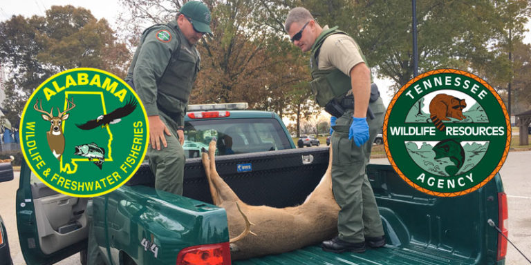 Import ban vital to prevent the spread of CWD