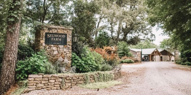 Spend Black Friday shooting clays at Selwood Farm