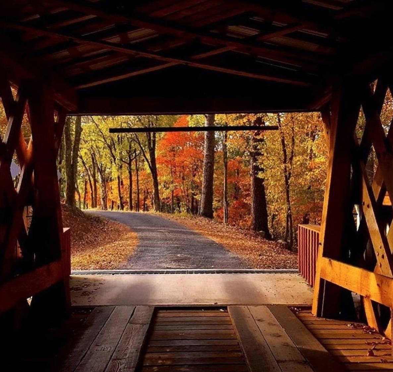 covered bridge with alabama fall foliage