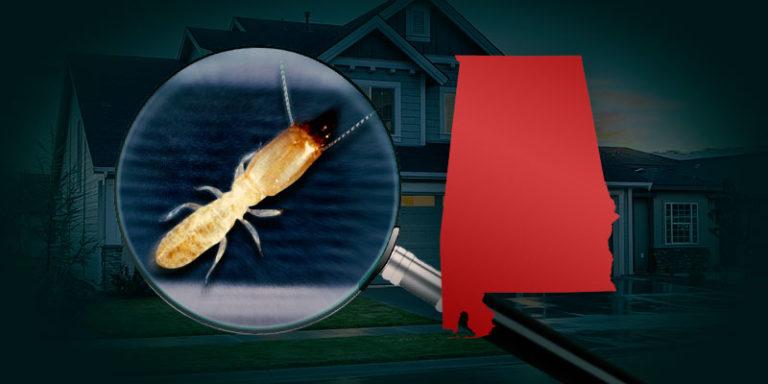 Terminix to pay $60 million in coastal Alabama termite claims settlement