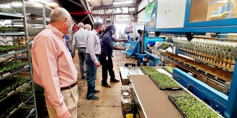 Bonnie Plants plans greenhouse projects, e-commerce upgrades in Alabama