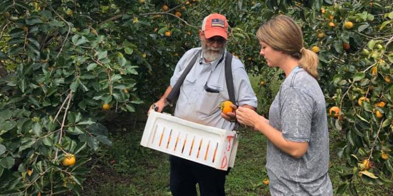 Alabama-grown: Chilton County farmer cultivates her dream