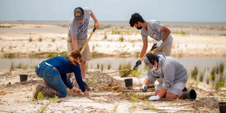 Students helping restore critical Alabama shoreline